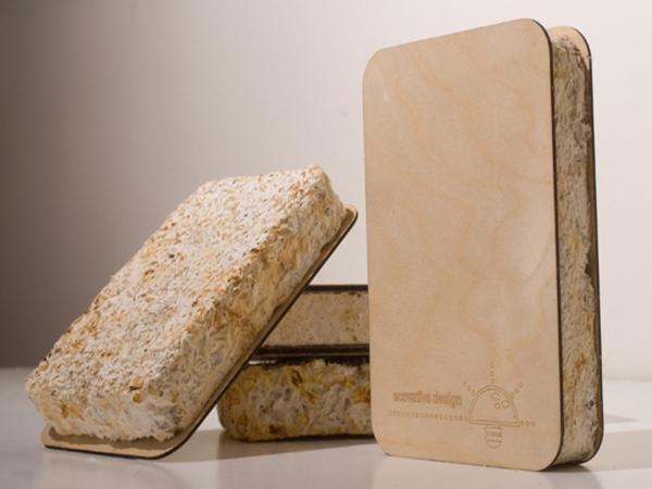 Использование грибов в качестве строительного материала