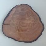 как выглядит крень древесины