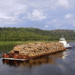 водная трансопортировка древесины