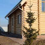 Дом из кедра №1