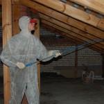 Огнебиозащита древесины: основные способы и их эффективность