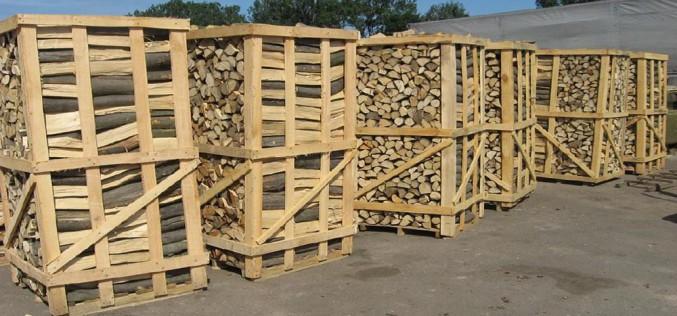 как можно использовать древесину березы