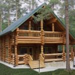 как выглядит дом из лиственницы