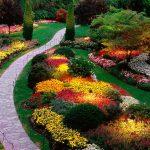 Раствор для садовой дорожки: раскрываем секреты и тонкости его изготовления